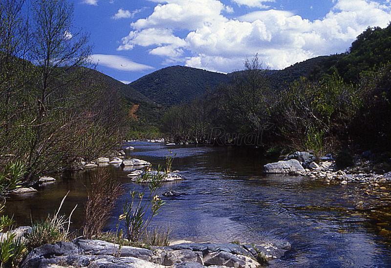 Parque Natural Sierra de Cardeña y Montoro: Información útil y fotos